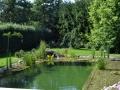 Domaci-plavalni-ribnik.jpg